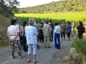 visite du vignoble du mas d'Escattes avec les hôtes des gîtes de la bastide des oliviers à Souvignargues