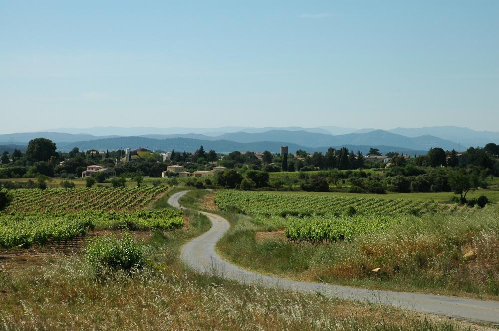e village de Souvignargues dans le Gard vu du vignoble Puech du Grès en Languedoc