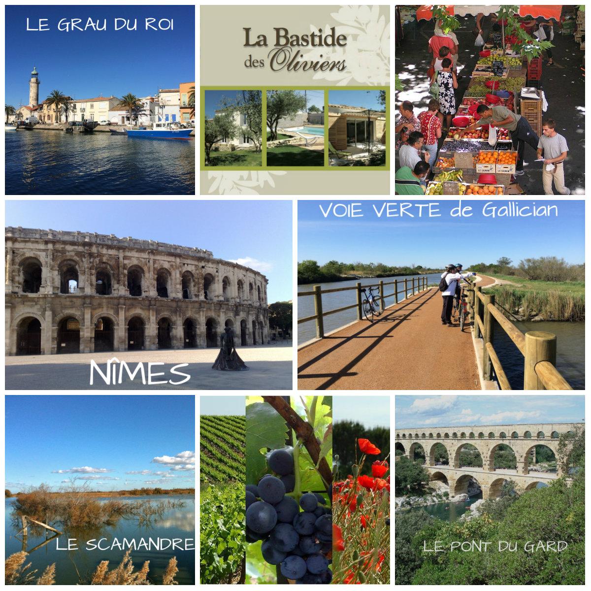 Printemps La Bastide des oliviers