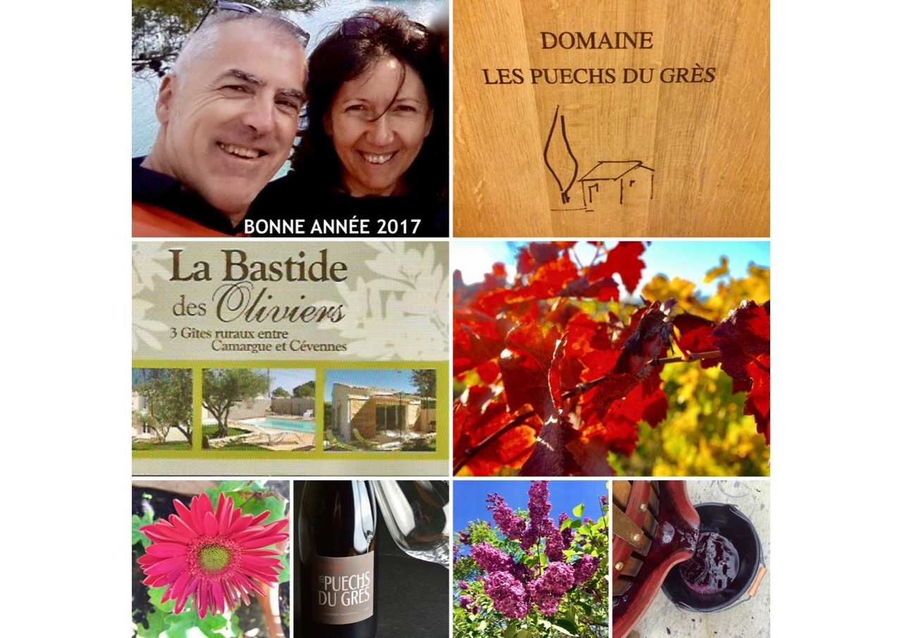 bonne-annee-2017-jpg